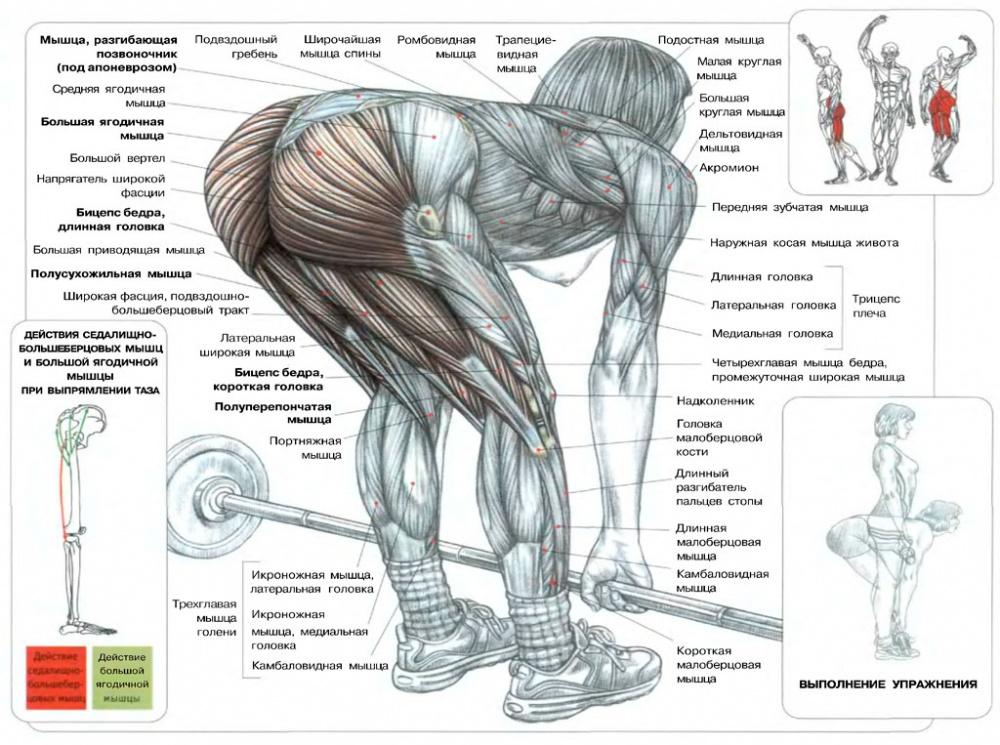 kuidas libiseda lihaste alla jalgades