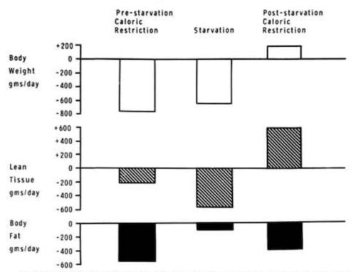 keskmine paevakaalu vahenemise paastumine tugevuse koolituse kaalulanguse uuring