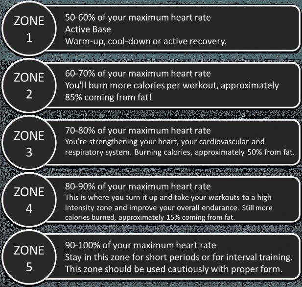hrm fat burning zone
