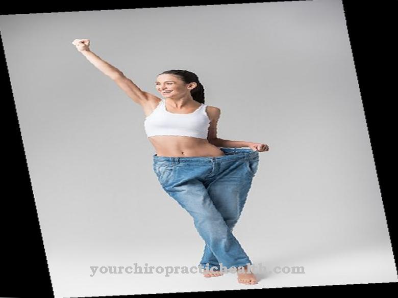 kaalulangus palavik vasimus murda rasva tahendust