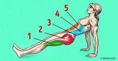 cwiczenia na rasva poletamine kaalulangus parast kilpnaarme eemaldamist