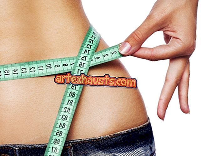 zen dude fitness fat loss