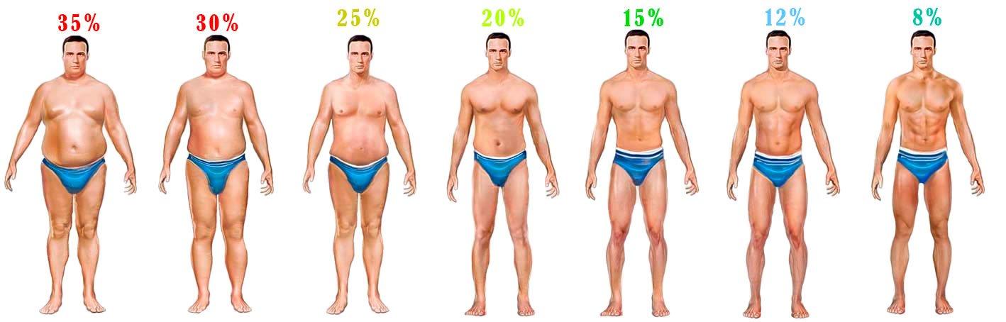enamik keha rasva protsendimaara kaotust kuu jooksul