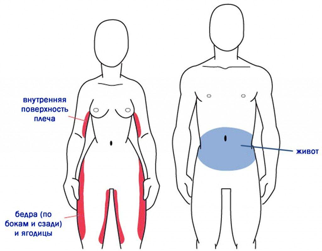 slimming lohe retseptid