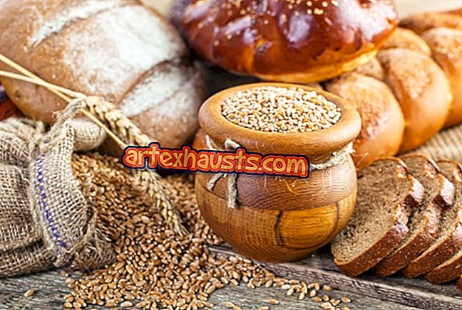 looduslik koht rasva poletamine toidud peavalu palavik kaalulangus
